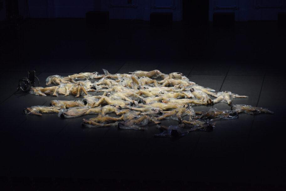 """Zdjęcie: Nowy Teatr w Warszawie/Festiwal Nowa Europa. Inne spojrzenia: """"Habitat"""" – reż. Doris Uhlich"""