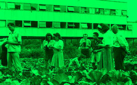 Zdjęcie: Warszawa: Warsaw Bauhaus/Curie City zapraszają na serię wydarzeń poświęconych dziedzictwu Black Mountain College