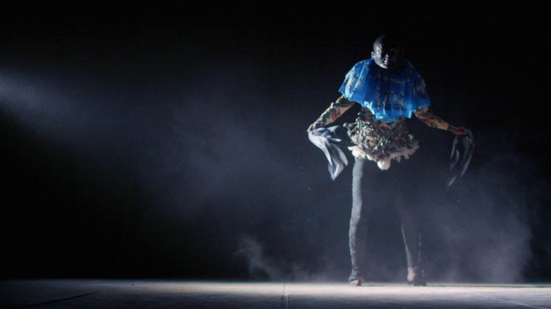 Zdjęcie: 14. AfryKamera: Teatr i taniec na dużym ekranie