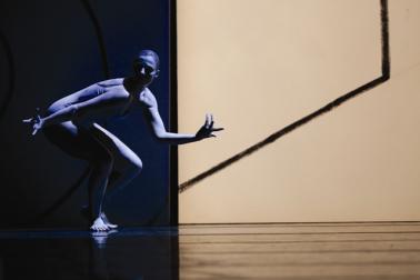 Zdjęcie: Artefakty Baletu