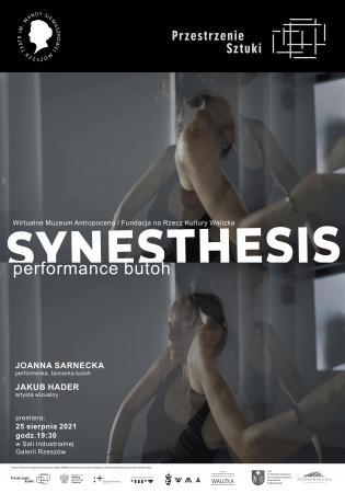 Zdjęcie: Rzeszów/Krosno/Przestrzenie Sztuki: Joanna Sarnecka, Jakub Hader Synesthesis  performans butoh