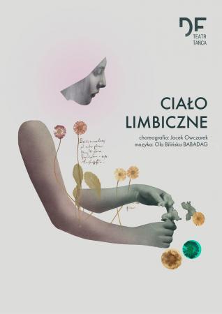 """Zdjęcie: Kraków/Festiwal SPACER 2015: Teatr Tańca DF """"Ciało limbiczne"""" — chor. Jacek Owczarek"""