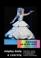Zdjęcie: Balet Dworski Cracovia Danza