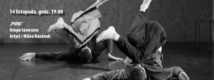 """Zdjęcie: Kraków/Scena Tańca Współczesnego: Milan Kozánek i Grupa taneczna Artyci """"Pure"""""""